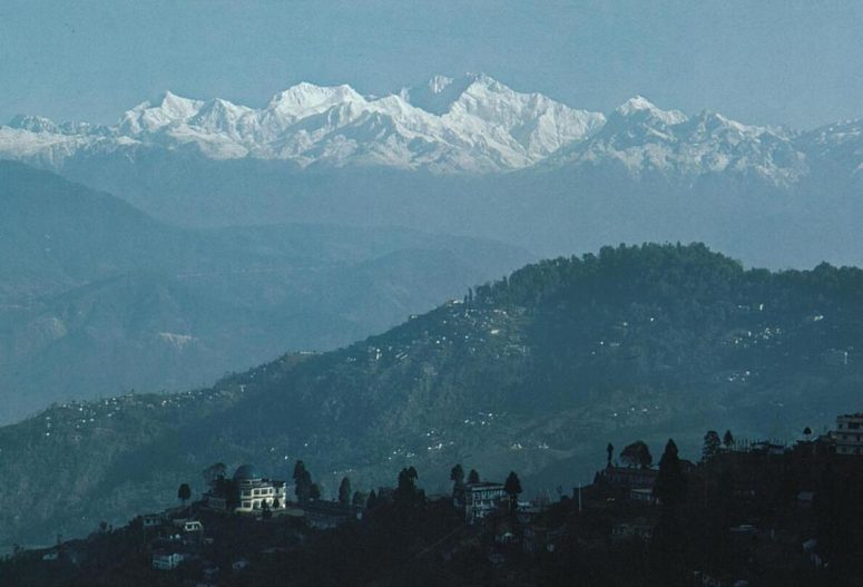 Darjeeling Valley