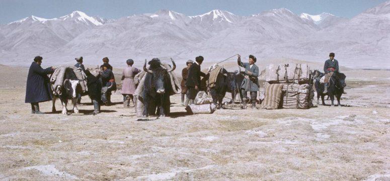 Kyrgyz nomads with yak -karavane 1967