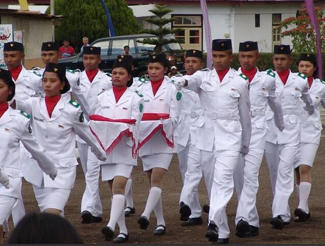 Parade on Independence Day