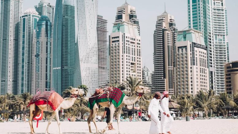 What to see and do in Dubai